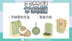 天竺鼠草架