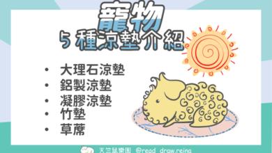 Photo of 寵物涼墊推薦-5種夏天涼墊教你選出適合的涼墊