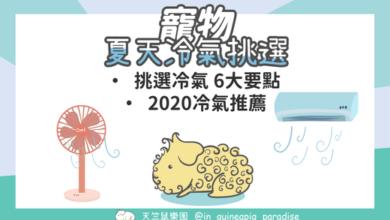 Photo of 2020冷氣推薦-挑選冷氣的6大要點,讓寵物吹的舒服又省電