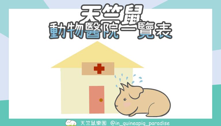 天竺鼠動物醫院一覽表