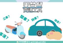 Photo of 天竺鼠搭車注意!6種常見交通工具